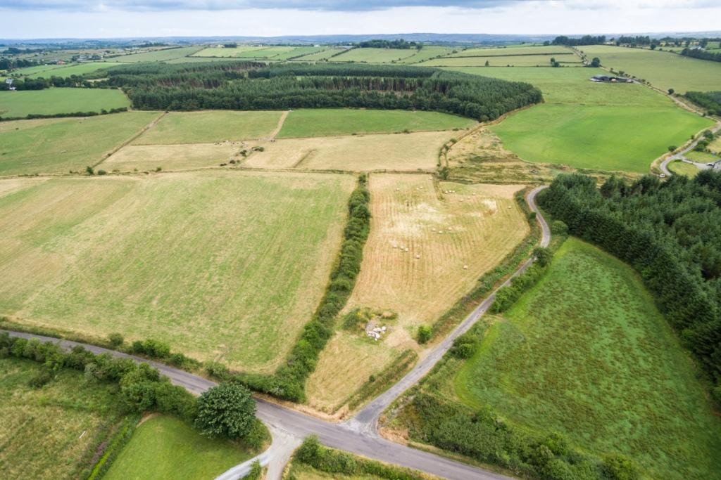 """Henry's Field"", Bengour East, Newcestown, County Cork"